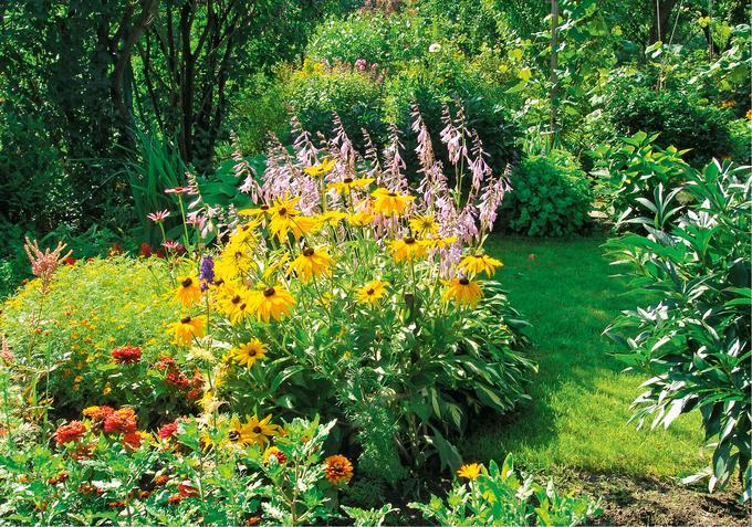 Pożyteczni mieszkańcy ogrodów